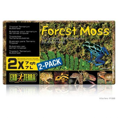 Asternut Exo Terra Forest Moss - 500 Gr