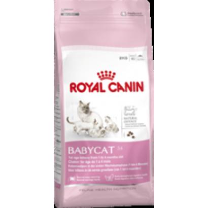 Royal Canin Babycat 34 - 0.4 Kg