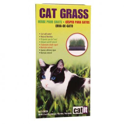 Cat Grass - 85 G