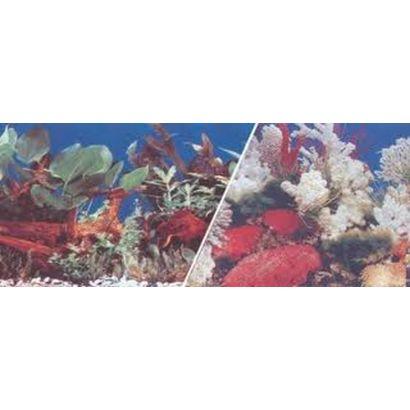 Fundal Rola Acvariu Coral/nature 30 Cm 15m