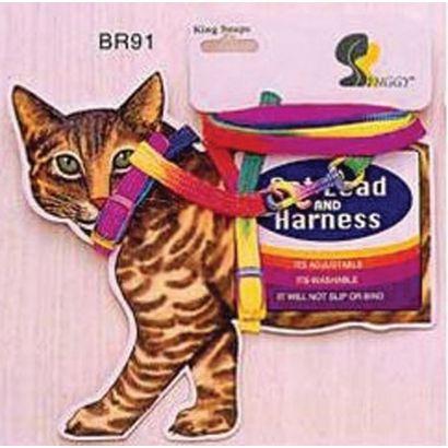 Ham + Lesa Pisica Br91 Card