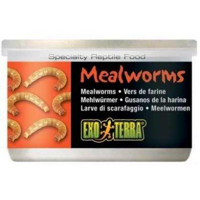 Meniu Exo Terra Mealworms - 34g