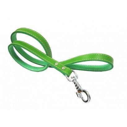 Lesa Pet Expert Clasic 1,8x110 Cm Verde Nr.4