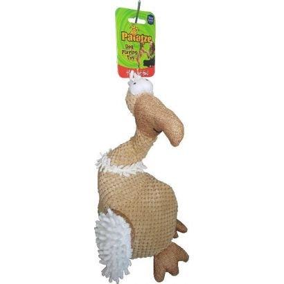 Paiatze Dog Vultur P8013