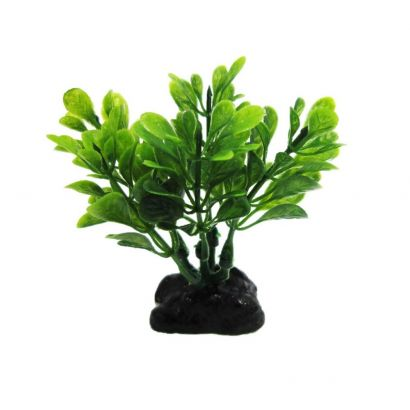 Planta Plastic Resun Boxwood Green 8 Cm