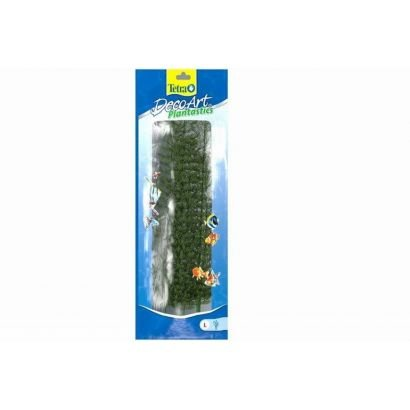 Plante Decoart Ambulia L