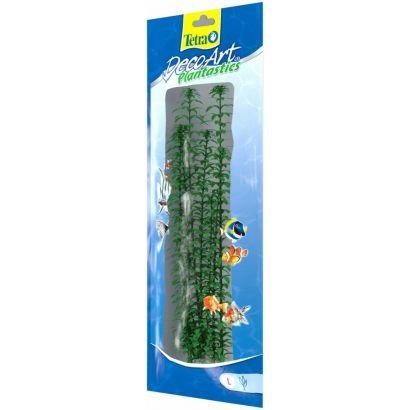 Plante Decoart Anacharis L