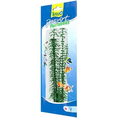 Plante Decoart Anacharis M