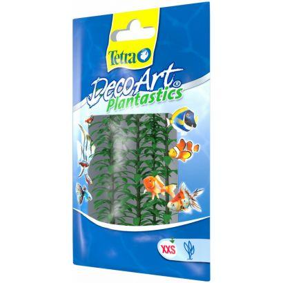 Plante Decoart Anacharis Xxs