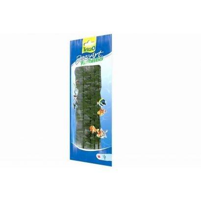 Plante Decoart Green Cabomba M