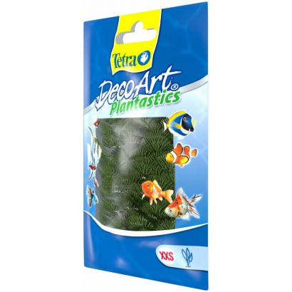 Plante Decoart Green Cabomba Xxs