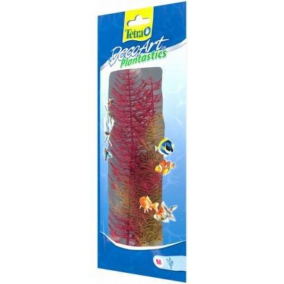 Plante Decoart Red Foxtail M