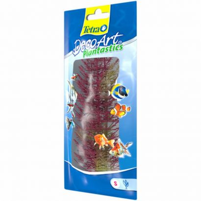 Plante Decoart Red Foxtail S