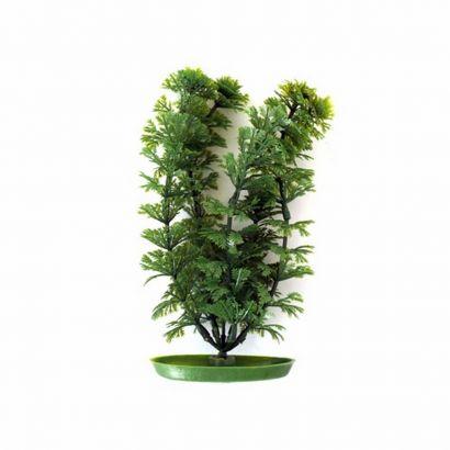 Plante Marina Ambulia - 30 Cm Pp1202