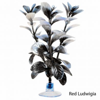 Plante Marina Betta Kit Red Ludw 12078