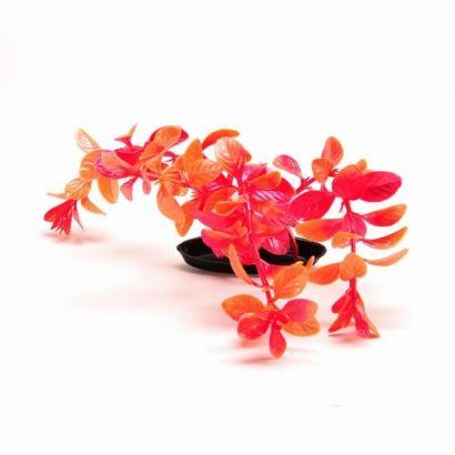 Plante Marina Color Red Ludw. - 30 Cm Pp1249