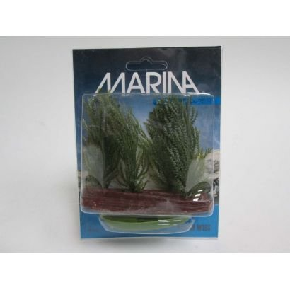 Plante Marina Willow Moss Pp312