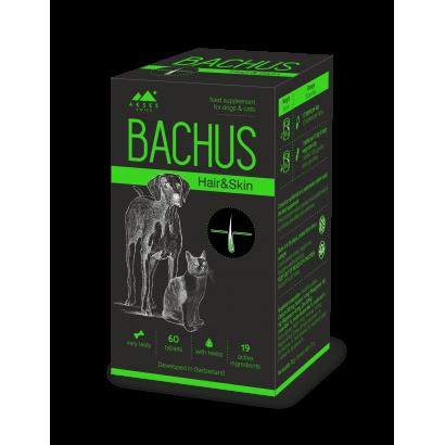 BACHUS Hair & Skin