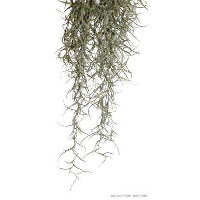 Exo Terra Planta Spanish Moss Medium